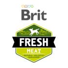 Brit Fresh (Брит Фреш)
