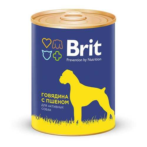Брит консервы для собак говядина с пшеном (0,85 кг) 1 шт