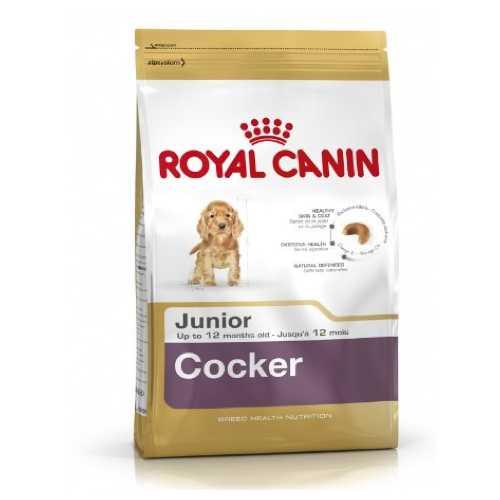Royal Canin Cocker Junior | Сухой корм Роял Канин для щенков породы Кокер спаниель 3 кг