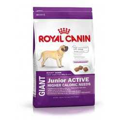 Royal Canin Giant Junior Active | Сухой корм Роял Канин Джайнт Паппи Актив для активных щенков гигантских пород 15 кг