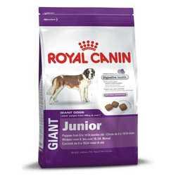 Royal Canin Giant Junior | Сухой корм Роял Канин Джайнт Юниор для щенков гигантских пород 4 кг