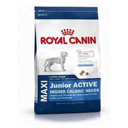 Royal Canin Maxi Junior Active | Сухой корм Роял Канин Макси Юниор Актив для активных щенков крупных пород 15 кг
