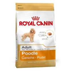 Royal Canin Poodle | Сухой корм Роял Канин для взрослых собак породы Пудель 1,5 кг