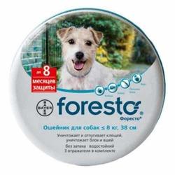 Foresto S/M ошейник для мелких и средних собак 38 см